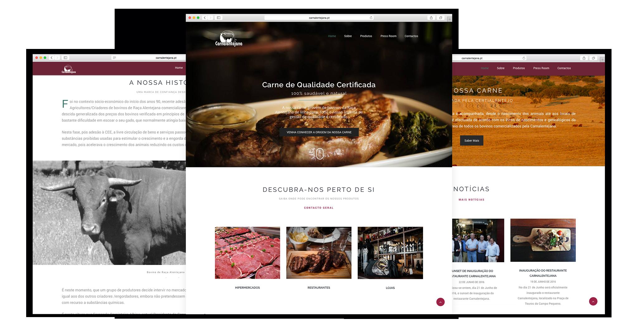 Criação de websites - Carnalentejana